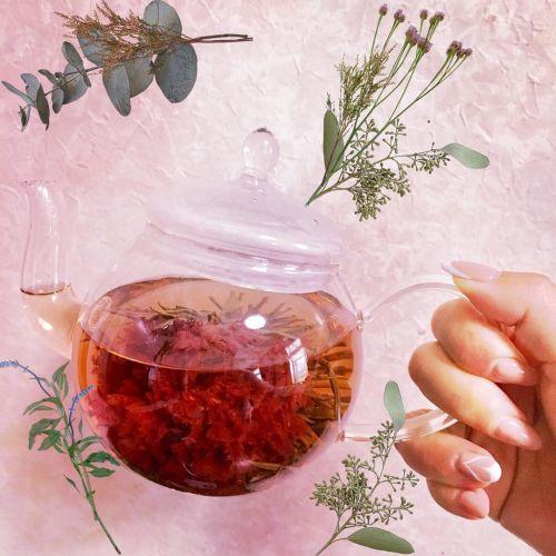 美容&健康オタク必見!韓国の愛されスイーツ《伝統茶》に注目♡のサムネイル画像