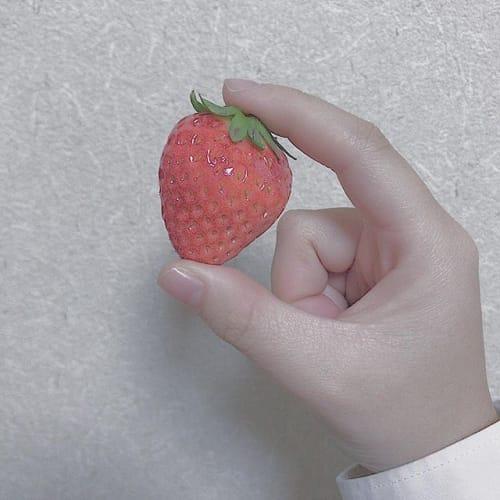 食べ過ぎても大丈夫?この春やりたい【いちごダイエット】のススメ♡のサムネイル画像
