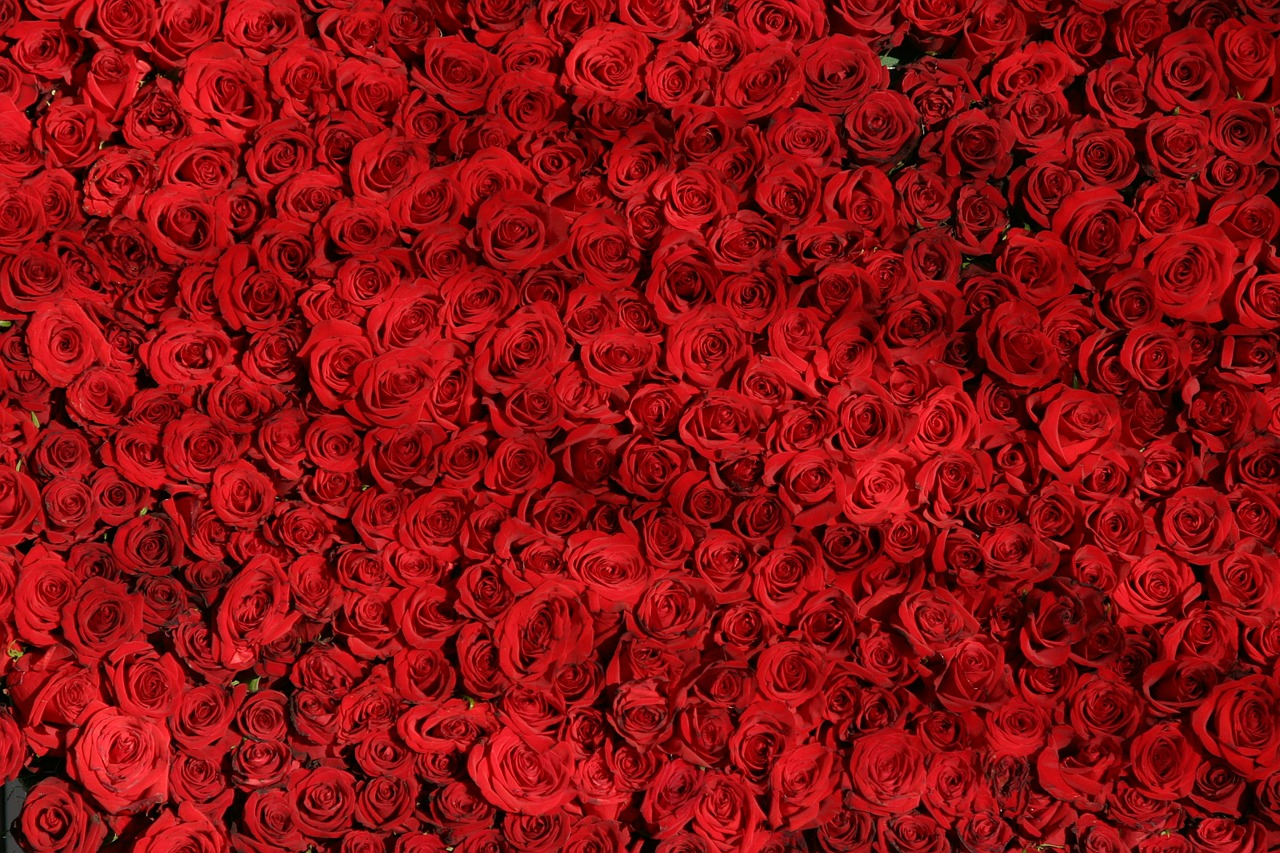 上品で女性らしさ溢れる香り☆おすすめのローズの香りの香水特集!のサムネイル画像
