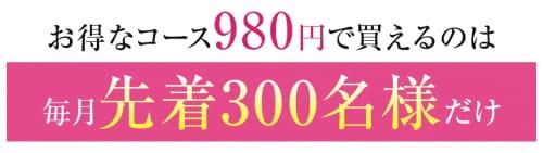記事番号:129536/アイテムID:4660010の画像